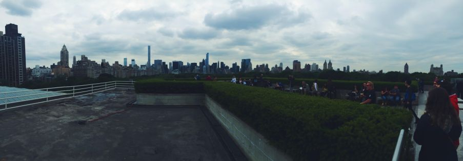 Top of the Met, NYC